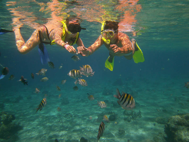 Snorkeling in Isla Mujeres